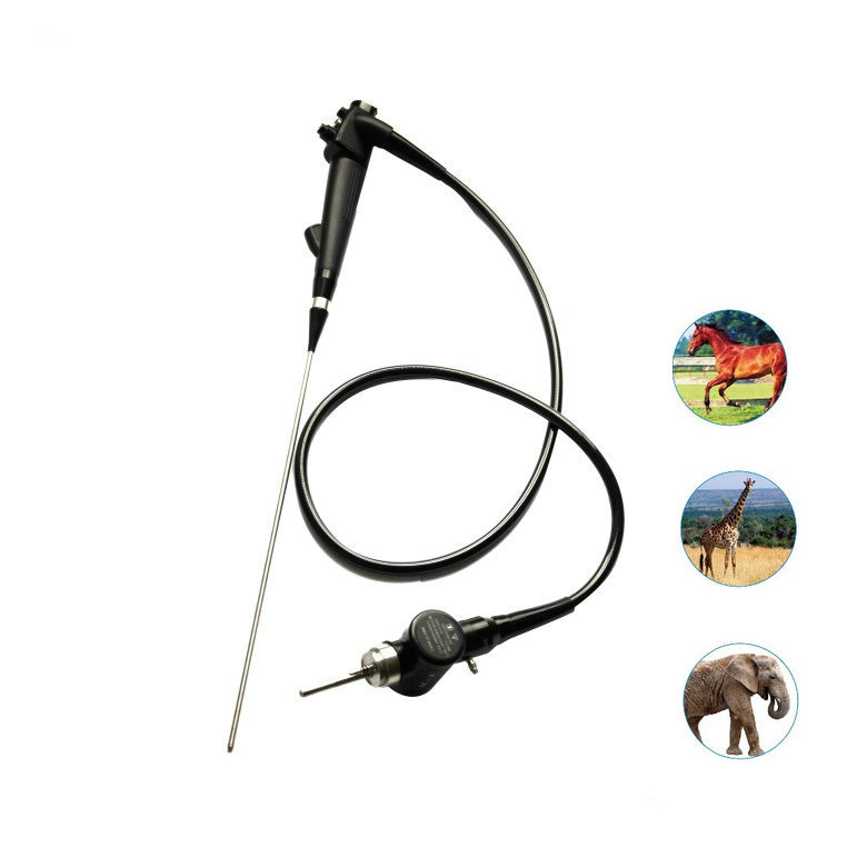 Best Endoscope Colonoscope Small Endoscope